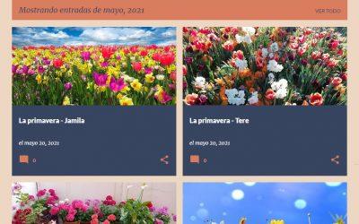"""Primavera, flors, plantes medicinals i """"#bruixetes"""" al Punt Òmnia Fundació Akwaba"""