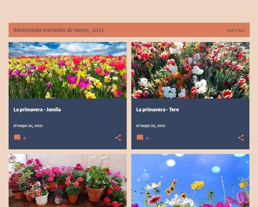 """Primavera, flores, plantas medicinales y """"#brujitas"""" en el Punto Ómnia Fundación Akwaba"""